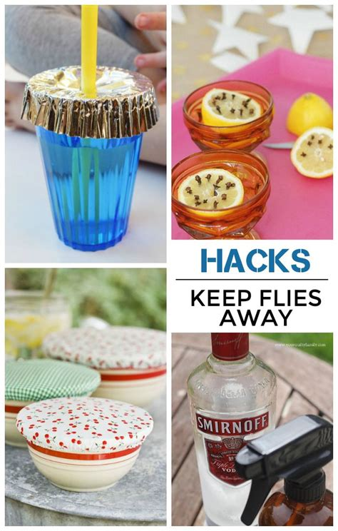 Whole Foods To Keep Away by How To Keep Flies Your Food Definitely Worth Reading