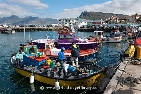 cape craft boats south africa photos and pictures of fishing boats in the harbour kalk