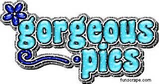 nice profile graphics gif animation