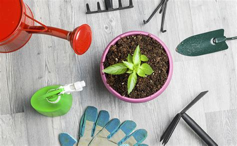 gift ideas for gardening enthusiasts gifts for lawn garden enthusiasts