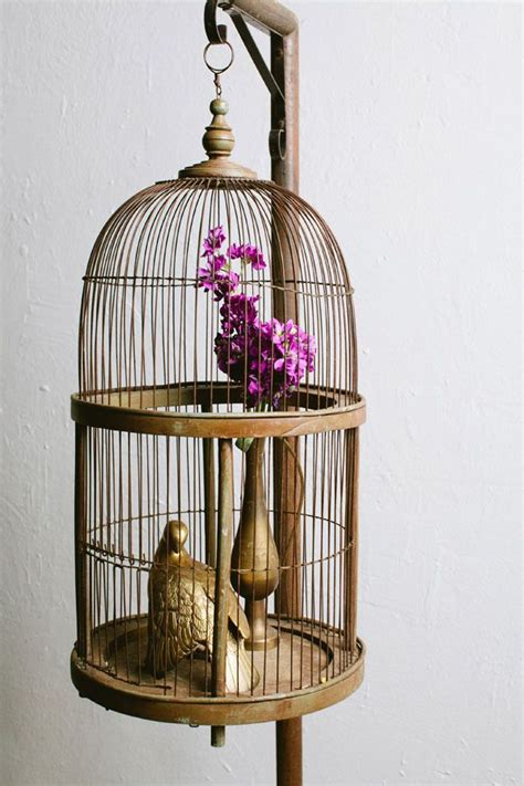 bird home decor using bird cages for decor 46 beautiful ideas digsdigs