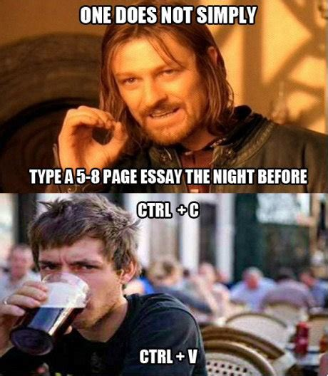Funny Bitch Memes - type a 5 8 page essay the night before funny pictures funny pictures best jokes comics