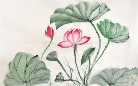 Lotus Leaf Original 30pcs watercolor painting of lotus leaves and flower stock illustration illustration of bloom