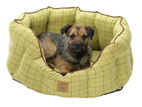 house of paws dog bed house of paws tweed oval dog bed 22 inch