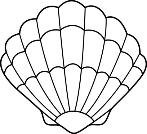 colorable claim seashell lineart free clip