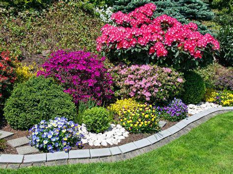 choosing a colour scheme for your garden saga