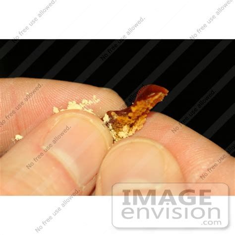 ear wax color meaning picture of earwax from an ear candle 607 by kenny