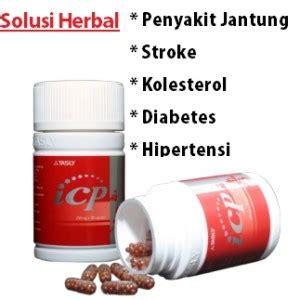 Obat Herbal Icp icp capsule obat herbal penyakit jantung koroner