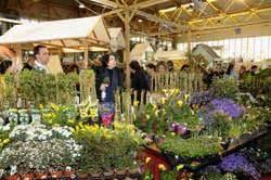 fiera dei fiori pordenone ortogiardino 2010 e flor