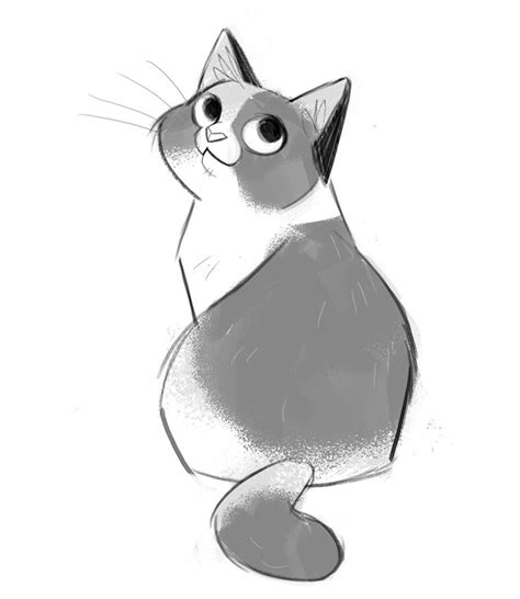 cat and drawing 25 best cat drawing ideas on anime cat anime animals and simple cat drawing