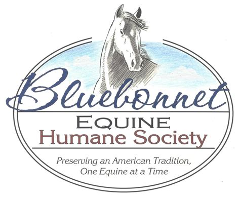 how to start a rescue bluebonnet equine humane society how to start and run a rescue