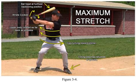 muscles used to swing a bat baseball timing mechanism explained timing step or stride