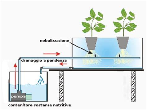Colture Idroponiche In Casa by Aeroponica Coltivazione Senza Substrato Giardinaggio