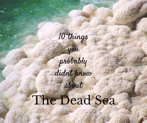 10 Things You Need To About Dead Sea Products by 10 Things You Probably Didnt About Tours And