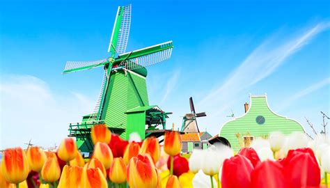 Search Netherlands Netherlands Travel Guide And Travel Information