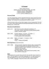 Resume Personal Profile Cv Profile Ideas It Resume Cover Letter Sle