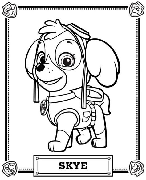 paw patrol blank coloring pages to print skye paw patrol coloring pages coloring pages