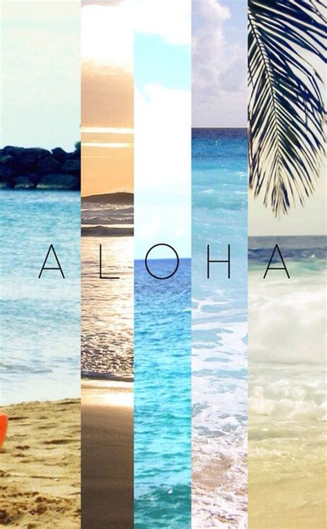 wallpaper tumblr aloha the chill life surf skate pinterest summer hawaii