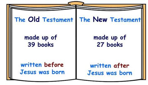 sections of the new testament elimu the bible