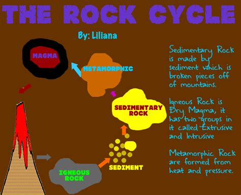 diagram of how sedimentary rocks are formed sedimentary rock diagram for metamorphic rock diagram