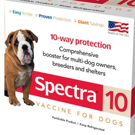 annual for dogs canine spectra 10 way annual booster vaccine for dogs