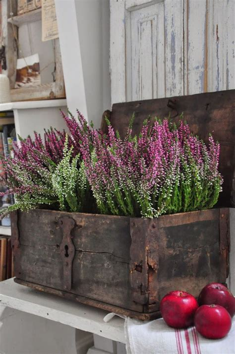 Herbst Gartenblumen by Best 25 Provence Style Ideas On Provence