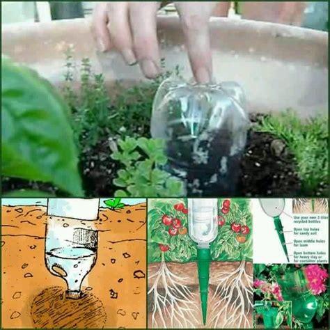 drip irrigation container garden container garden drip irrigation i need an irrigation