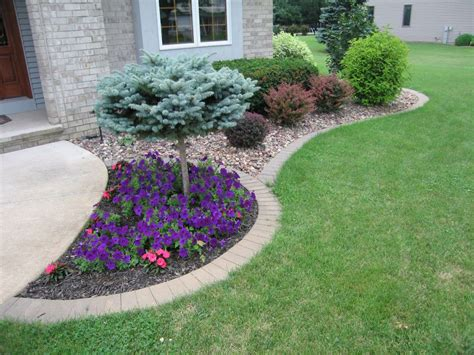 Bushes For Landscaping Shrubs And Bushes For Sale In Appleton Wi
