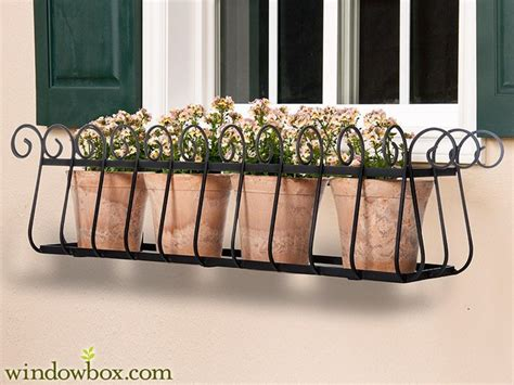 Wrought Iron Railing Planter Box by Best 20 Wrought Iron Window Boxes Ideas On