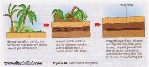 Batu Fosil Kayu Kapur Dan Kayu Uli pt3 sains bab6 tingkatan 3