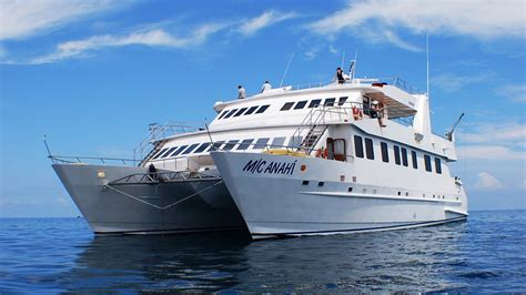 galapagos catamaran reviews galapagos cruise catamaran anahi heritage safaris