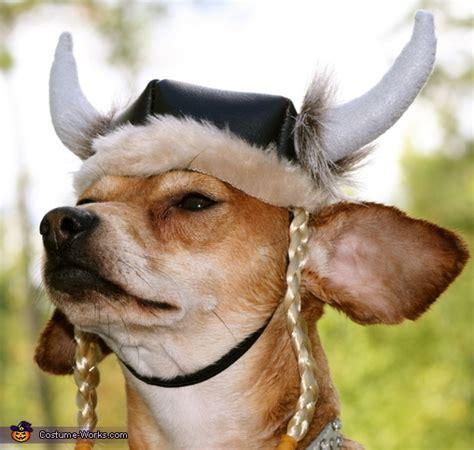 viking diy costume ideas  dogs photo