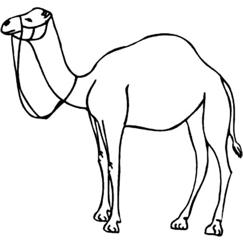 Free Coloring Pages Of Camel Mask Camel Coloring Page