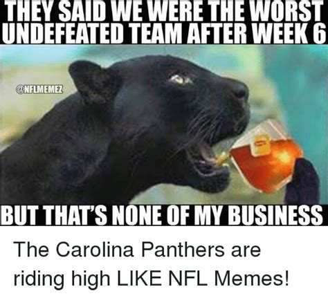 Panthers Memes - carolina panthers undefeated memes pictures