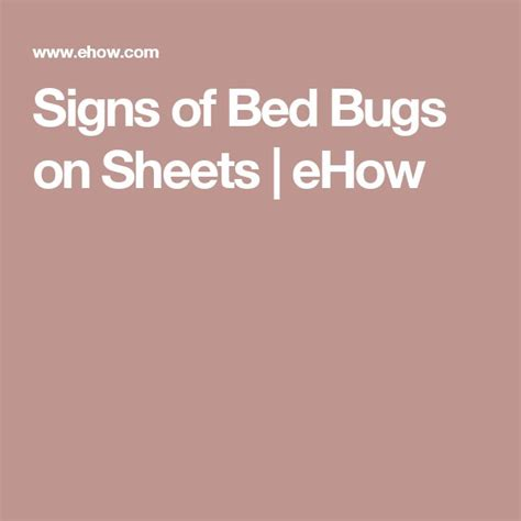what are signs of bed bugs 25 best ideas about bed bugs signs on pinterest sand and water pit fire pit chairs