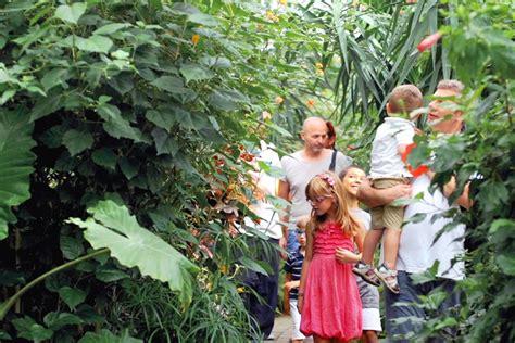 casa delle farfalle marittima casa delle farfalle a cervia ra 2017 emilia romagna