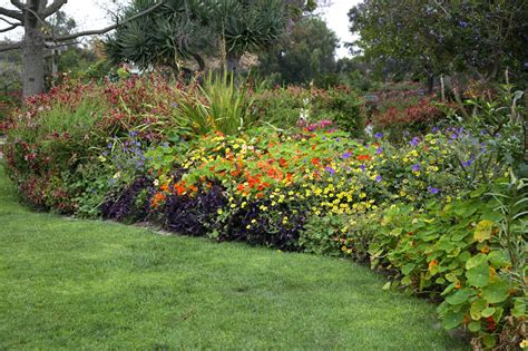 perennial flower garden layouts travelemag