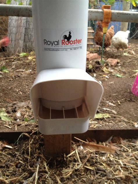 new chicken feeders the greening of gavin