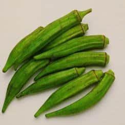 Bibit Kacang Okra jual benih bibit okra murah lengkap bibit