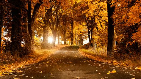 Landscape Pictures Autumn 20 Fantastic Autumn Landscape Wallpapers