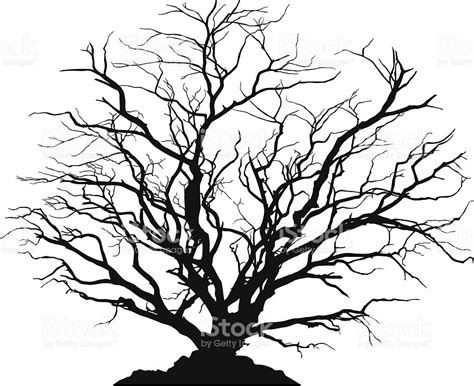 detailed silhouette of a round deciduous tree with no