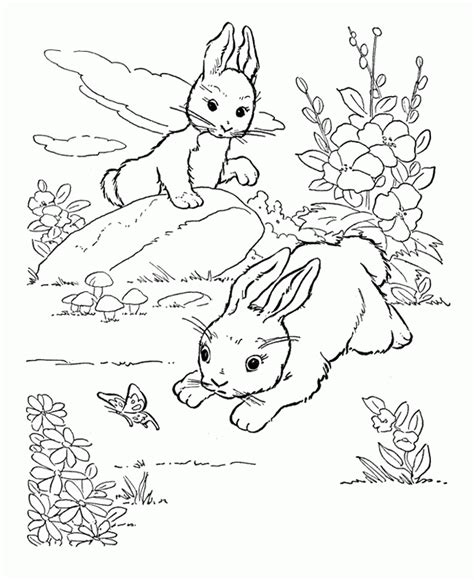rabbit coloring pages pdf rabbits coloring pages two rabbits playing in the garden