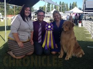 evergreen golden retrievers evergreen golden retriever club friday august 8 2014 canine chronicle