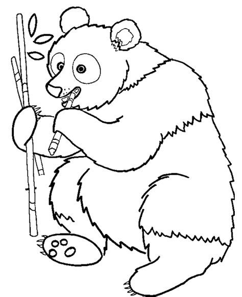coloring page of panda bear cute panda coloring pages coloring home