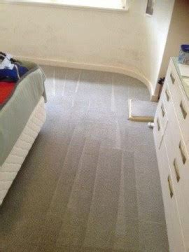 rug cleaning sydney carpet cleaning sydney carpet cleaners sydney butler