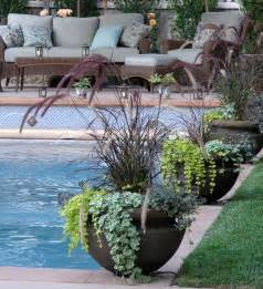 container potted gardens eclectic pool san francisco by derviss design