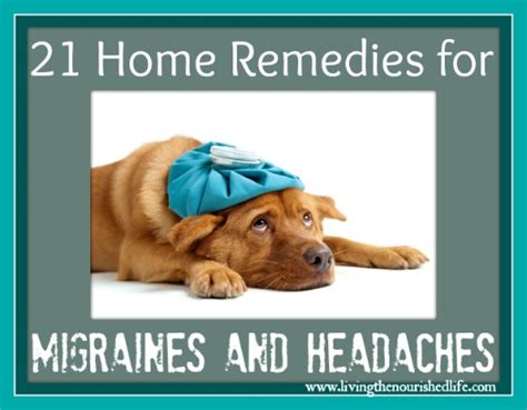 21 home remedies for migraines and headaches sheep media