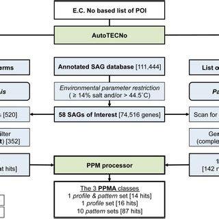 pattern matching algorithm steps flowchart illustrating the ppm profile pattern matching