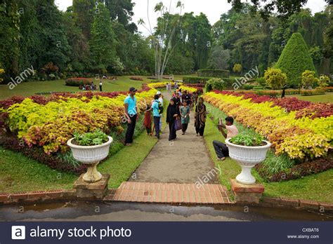 Royal Botanical Gardens Peradeniya by Visitors In The Royal Botanical Garden Peradeniya Kandy