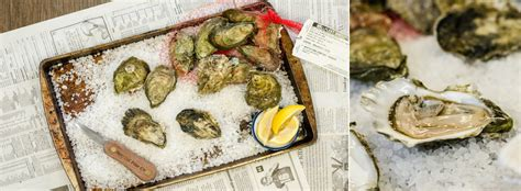 Oyster V3 4 Creative Photo Theme east coast oysters seattle fish co